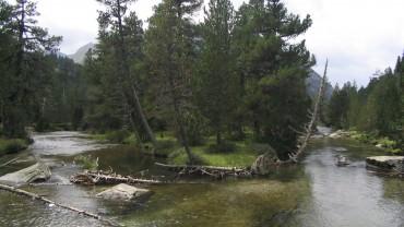 Trekking por el Parque Nacional de Aigües Tortes sin transporte: Carros de Foc -7 días- Salida 30/8/20