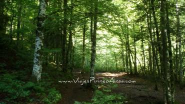 Senderismo Parque Natural Valles Occidentales sin transporte -Senda Camille -7 días- Salidas 12/7, 9/8 y 30/8/20